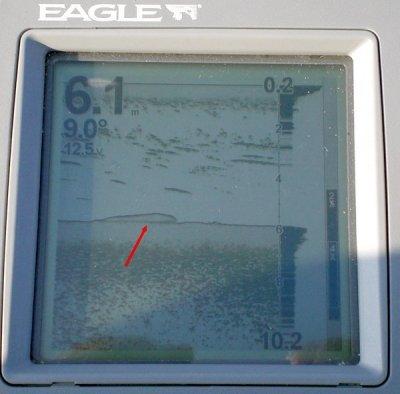 CIMG1006.thumb.JPG.31186c3d6d928d4bdb709fda011f256f.JPG