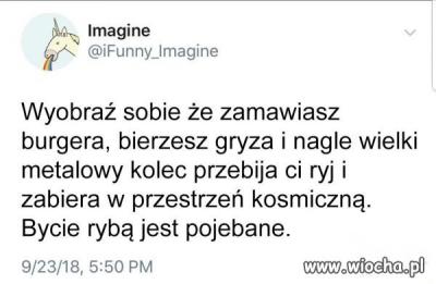 obraz.png